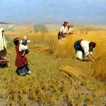Мацик «Полесский» — уникальная находка для тех, кто в поле!